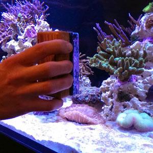 Чистка аквариума в Москве