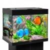 Аквариум BioDesign Риф 100 черный, 100л (без светильника)
