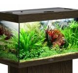 Аквариум BioDesign Риф 125 венге, 125л (без светильника)