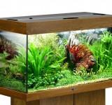Аквариум BioDesign Риф 125 золотой дуб, 125л (без светильника)