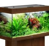 Аквариум BioDesign Риф 125 золотой орех, 125л (без светильника)