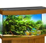 Аквариум BioDesign Панорама 140 золотой дуб, 135л (без светильника)