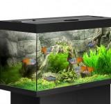 Аквариум BioDesign Риф 150 черный, 145л (без светильника)