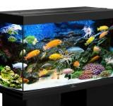 Аквариум BioDesign Риф 200 черный, 185л (без светильника)