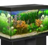 Аквариум BioDesign Риф 250 черный, 230л (без светильника)