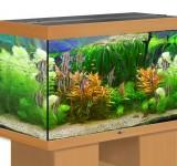 Аквариум BioDesign Риф 250 бук, 230л (без светильника)