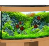 Аквариум BioDesign Панорама 280 бук, 270л (без светильника)