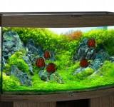 Аквариум BioDesign Панорама 280 венге, 270л (без светильника)