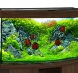 Аквариум BioDesign Панорама 280 золотой орех, 270л (без светильника)