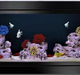 Пресноводный аквариум под ключ 300л