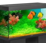Аквариум BioDesign Риф 300 черный, 300л (без светильника)