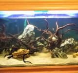 Пресноводный аквариум под ключ 600л