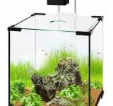 Аквариум BioDesign Q-Scape 6,5 л Cubic Line (без светильника)