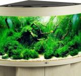 Аквариум Biodesign Диарама 150, беленый дуб, 130л (без светильника)