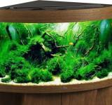 Аквариум Biodesign Диарама 150, золотой дуб, 130л (без светильника)