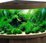 Аквариум Biodesign Диарама 150, золотой орех, 130л (без светильника)
