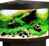 Аквариум Biodesign Диарама 90, венге, 90л (без светильника)
