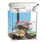 Аквариум морской Aquael Nano Reef 30 белый, 30л