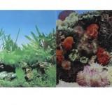 Фон Prime двухсторонний Кораллы/Растительный 30х60см