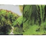 Фон Prime двухсторонний Коряги с растениями/Растительные холмы 60х150см