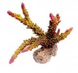 Коралл пластиковый Aqua-Pro REPLICA LIVE CORAL QFS-05B