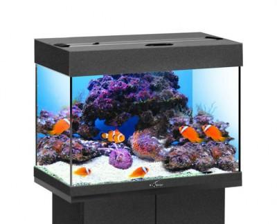 Аквариум BioDesign Риф 60 черный, 60л (без светильника)