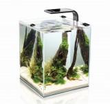 Аквариум Aquael Shrimp Set Smart Plant 10 черный, креветкариум