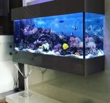 Морской аквариум под ключ 150-200л категория 2