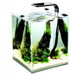Аквариум Aquael Shrimp Set Smart Plant II 10 черный, креветкариум