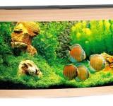 Аквариум Juwel Vision 260 LED светлое дерево