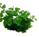 Композиция из пластиковых растений 15см PRIME M624