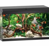 PRIMO 60 аквариум 60л черный (Black) 61х31х37см LED 8w Фильтр Bioflow One Нагр50W
