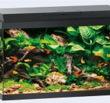 PRIMO  70 аквариум 70л черный (Black) 61х31х44см LED 8w Фильтр Bioflow One Нагр50W