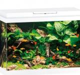 PRIMO  70 аквариум 70л белый (white) 61х31х44см LED 8w Фильтр Bioflow One Нагр50W