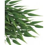 Гигантский бамбук Tetra ReptoDecoArt Plantastics 90 см
